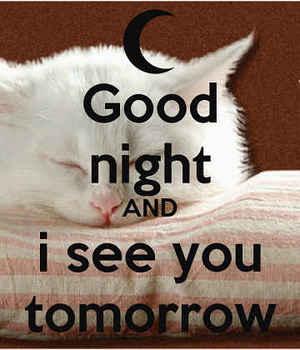 goodnight11.jpg
